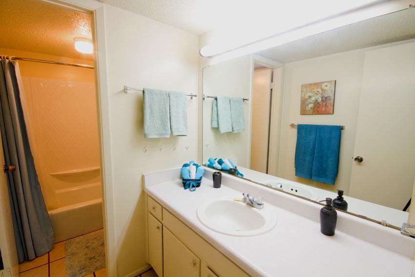 Camelot Apartments Bathroom