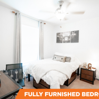 Canopy apartment sublease, Close to